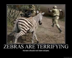 zebras-are-terrifying2